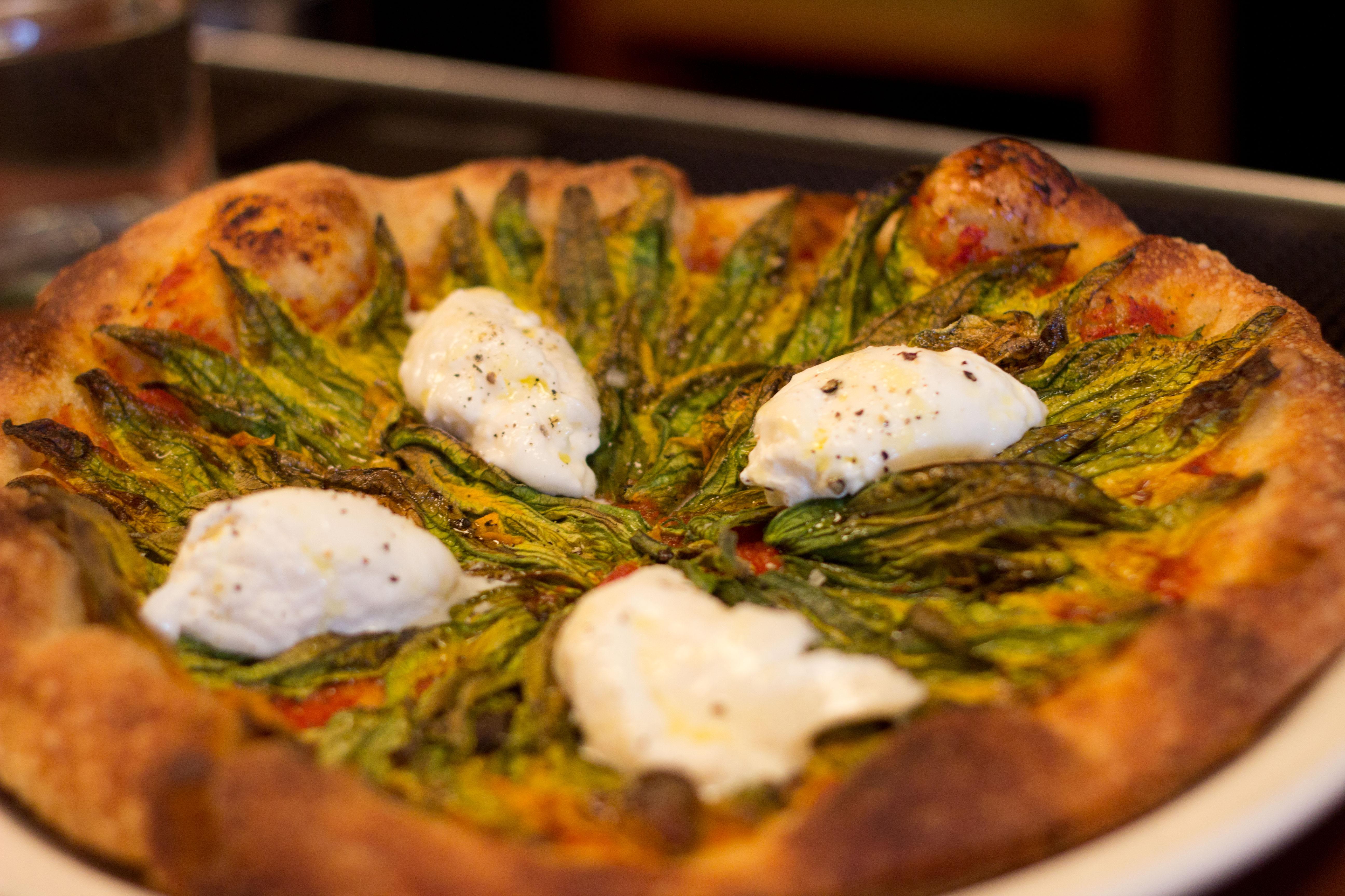 squash blossom pizza has squash blossom pizza with daily slice squash ...